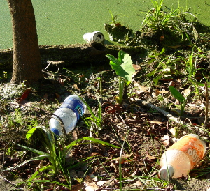 Plastic Pollution The Environmental Impact Of Bottled