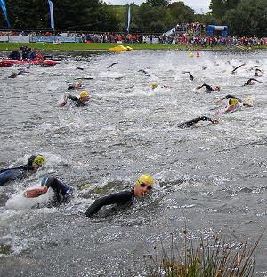 Swimming_start